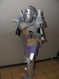 Alphonse Elric from FullMetal Alchemist: Brotherhood worn by Yoruichi