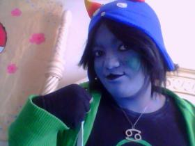 Nepeta Leijon from MS Paint Adventures / Homestuck worn by Waffles