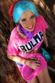 Bulma Briefs from Dragonball