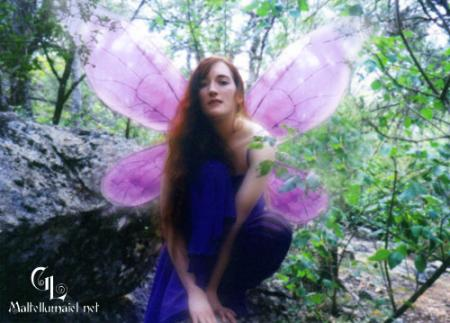 Fairy from Original:  Fantasy worn by Jadzia