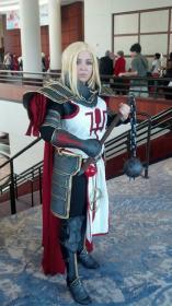 Crusader  from Diablo III  by Raiza