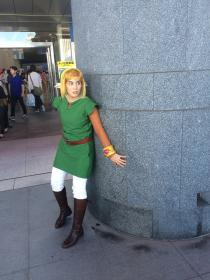 Link from Legend of Zelda: A Link Between Worlds worn by digisake