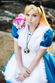 Alice from Alice in Wonderland worn by Binkx