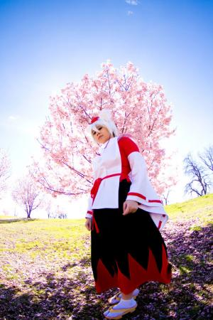 Momiji  Inubashiri from Touhou Project