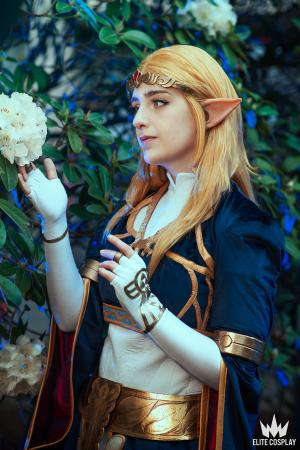 Zelda from Legend of Zelda: Breath of the Wild by Starrys