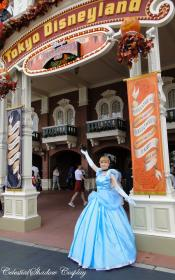 Cinderella from Disney Princesses worn by CelestialShadow19