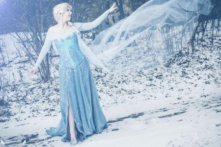 Elsa from Frozen worn by bossbot