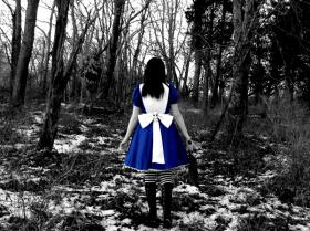 Alice from Alice: Madness Returns worn by Haven