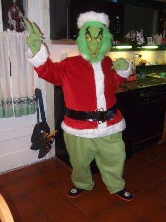 Grinch from Grinch that Stole Christmas, The worn by Anime Angel Blue