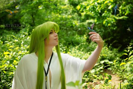 Enkidu (Fate/Grand Order)  by Lunaladyoflight