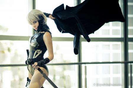 Raiden from Metal Gear Solid 4: Guns of the Patriots worn by precious