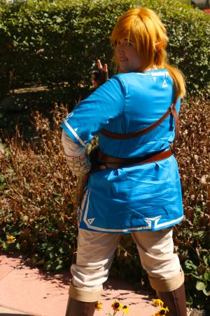 Link from Legend of Zelda: Breath of the Wild by Yucari