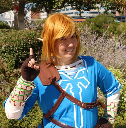 Link from Legend of Zelda: Breath of the Wild