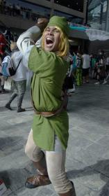 Link from Legend of Zelda: Skyward Sword worn by RJ Para