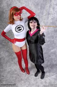 Elastigirl from Incredibles, The