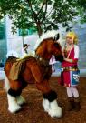 Zelda from Legend of Zelda: Skyward Sword worn by Naiiki