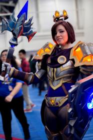 Paladin from World of Warcraft