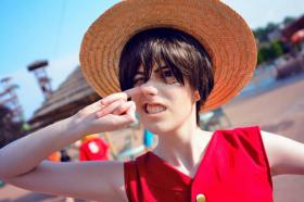 Monkey D. Luffy from One Piece worn by Shinjaninja
