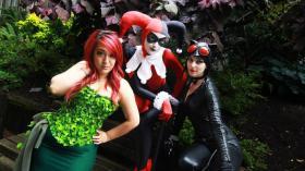 Harley Quinn / Dr. Harleen Francis Quinzel   from Batman worn by Soft Bells