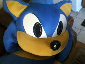 Sonic the Hedgehog from Sonic the Hedgehog Series
