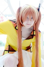 Enju Aihara from Black Bullet worn by Risuruuu