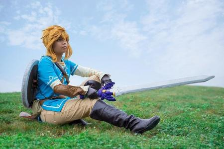 Link from Legend of Zelda: Breath of the Wild