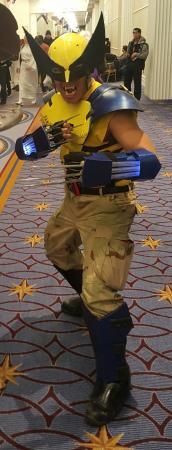 Wolverine from X-Men